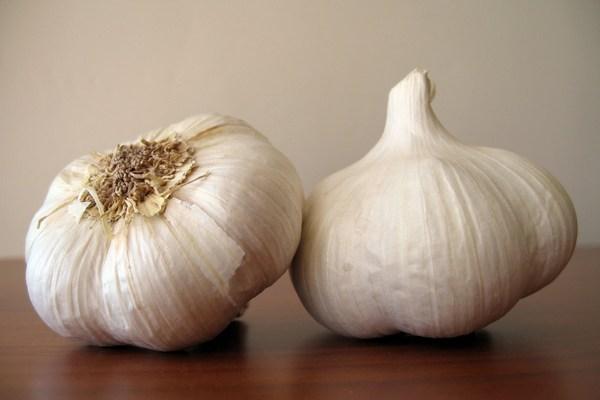 informasi harga bawang putih hari ini