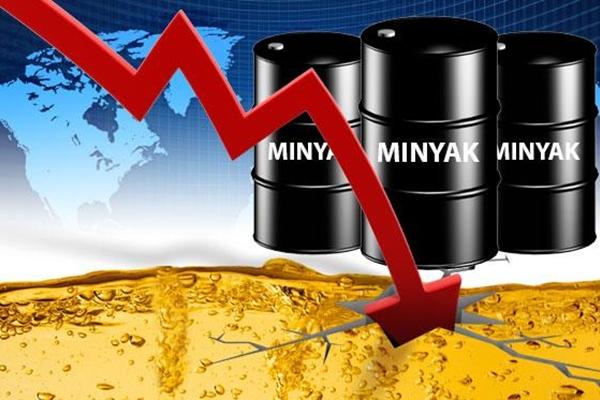 informasi penurunan harga minyak