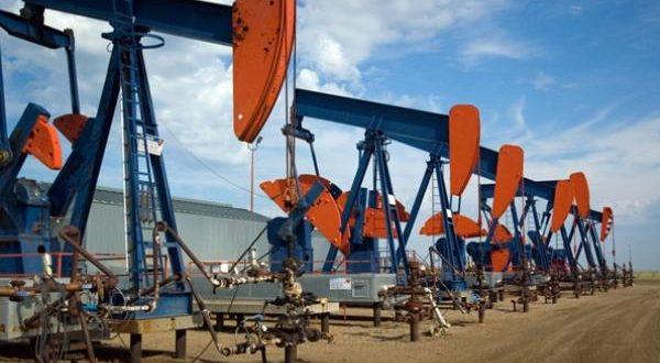 informasi harga minyak dunia