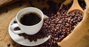 inforrmasi harga kopi terkini