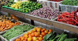 informasi harga pangan hari ini